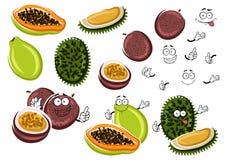Papaya, maracuja and durian fruits Royalty Free Stock Images