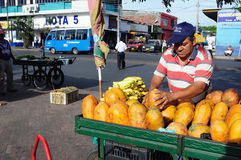 Papaya- Neiva .Colombia Royalty Free Stock Images