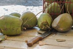 Papaya. Outdoor papaya preparation with knife Royalty Free Stock Photos