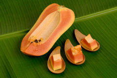 Papaya, Pawpaw. Royalty Free Stock Photography