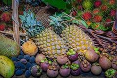 Thai fruits in the garden to bring tourists to eat. Papaya, pineapple, jackfruit, mango, muffin, leaf,rattan, durian Royalty Free Stock Photos