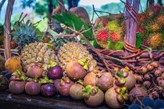 Thai fruits in the garden to bring tourists to eat. Papaya, pineapple, jackfruit, mango, muffin, leaf,rattan, durian Royalty Free Stock Photo