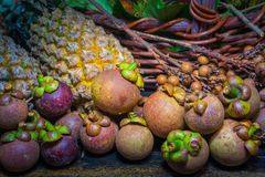 Thai fruits in the garden to bring tourists to eat. Papaya, pineapple, jackfruit, mango, muffin, leaf,rattan, durian Stock Photos
