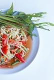 Papaya salad. Green papaya salad with spicy foods of Thailand Stock Photos