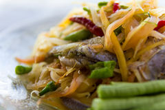 Papaya salad Pickled Fish. Close-up of papaya salad, which put Pickled Fish and long beans Royalty Free Stock Photos