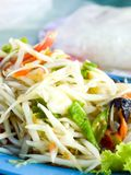 Papaya salad. Spicy papaya salad stock image