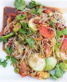 Papaya salad. Thai rice noodle papaya salad with pickled fish sauce Stock Image