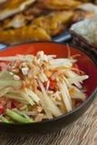 Papaya-Salat mit Huhn und klebrigem Reis Lizenzfreies Stockbild