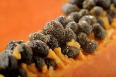 Papaya seeds Royalty Free Stock Photography