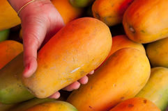 Papaya Stock Photos