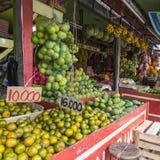 Papaya at tropical market in Yogjakarta, Indonesia. Royalty Free Stock Images
