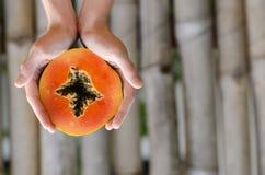 Papaya vändkretsfrukt, skiva, fred som är halv, händer Arkivfoton