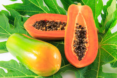Papaya. On the white background Stock Photo