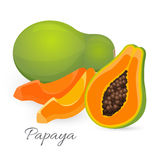 Papaya whole and half. Papaw, or pawpaw ediable exotic fruit. Royalty Free Stock Photos