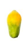 Papayanektar Lizenzfreies Stockfoto