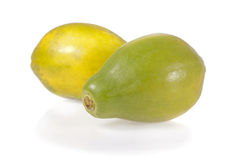 Papayas που απομονώνονται ώριμα Στοκ εικόνα με δικαίωμα ελεύθερης χρήσης