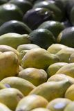 Papayas Royalty Free Stock Image