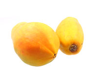 Papayas Stockbilder