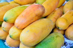 Papayas on display Royalty Free Stock Photo