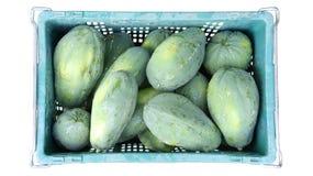 Papayas frescas Foto de archivo libre de regalías