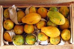 Papayas maduras   Fotos de archivo libres de regalías