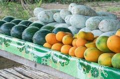 Papayas och vattenmelon Royaltyfri Bild