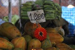 papayas imagem de stock