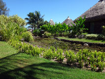 Papeete Tahiti Arkivfoto
