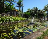 Papeete Tahiti Arkivbild