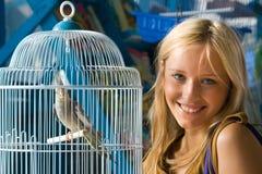 papegaai royalty-vrije stock fotografie