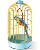 Papegaai in een kooi Stock Foto's