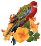 Papegaai en gele tropische bloemen royalty-vrije illustratie