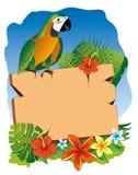 Papegaai en uithangbord Stock Foto