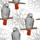Papegaai Naadloos patroon Stock Afbeeldingen
