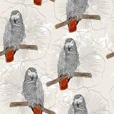Papegaai Naadloos patroon Royalty-vrije Stock Afbeeldingen