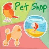 Papegaai, poedel en Gouden Vissen in Dierenwinkel Royalty-vrije Stock Foto's