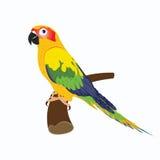 Papegaai, vectorillustratie Stock Foto