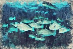 Papegaaivissen Marine Life-koraalrif onderwater Digitaal Art Impas royalty-vrije illustratie