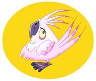 papegoja 2 Arkivbilder