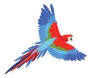 Papegoja i flykten också vektor för coreldrawillustration stock illustrationer