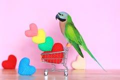 Papegoja på modellden miniatyrshoppa vagnen och färgrikt av handgjord virkninghjärta för valentindag arkivbild
