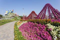 Papegojor på mirakelträdgården i Dubai Royaltyfria Foton