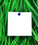 Papel asociado a la hierba verde Imagenes de archivo
