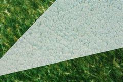 Papel cinzento e verde Imagens de Stock