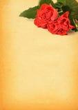 Papel con motivo color de rosa Foto de archivo libre de regalías