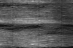Papel crepom em preto e branco Fotos de Stock
