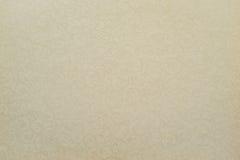 Papel da cor pálida com textura a céu aberto Foto de Stock