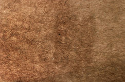Papel de Brown Ruffled foto de stock
