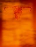 Papel de Bull Foto de Stock