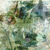 Papel de Grunge del bosque del pino foto de archivo libre de regalías